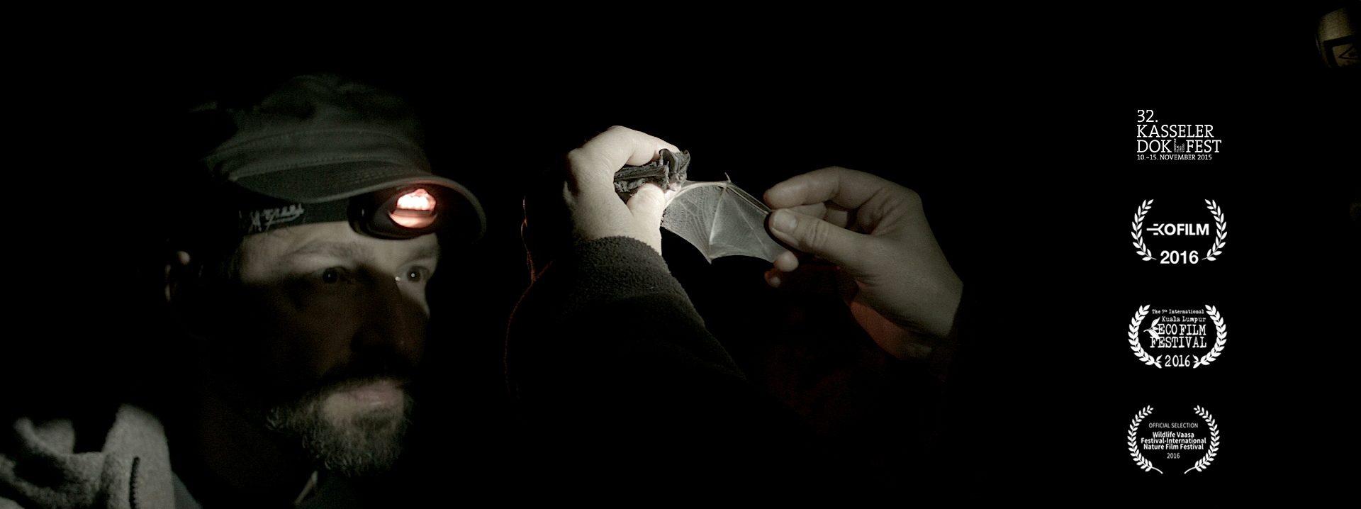 Fukushima und die Mopsfledermaus
